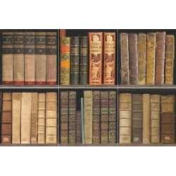 Полиран Books P 44x44 - лавици с книги 2