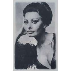Decor Sophia Loren 25x40