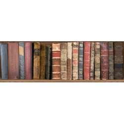 Декор Masai Books 1(Време разделно) 20x60