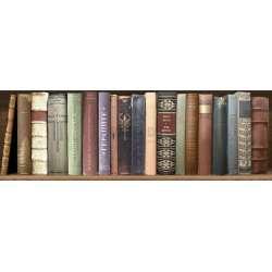 Декор Masai Books 2 (Под Игото) 20x60
