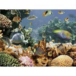 Декор Emma Kids 8 (рибки в отдалечен план) 25x33