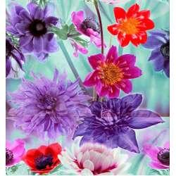 К-т декори Solео Bouquet 3 части