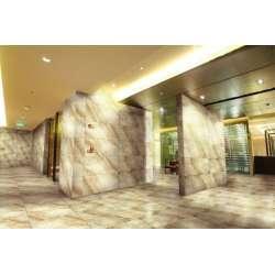 Полиран Sandstone 42x84 P0000133